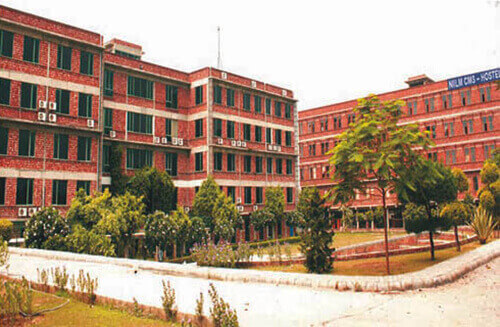 NIILM Centre of Management Studies, Greater Noida